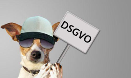 Hund mit Sonnenbrille und Cappy hält Schild mit DSGVO Aufschrift
